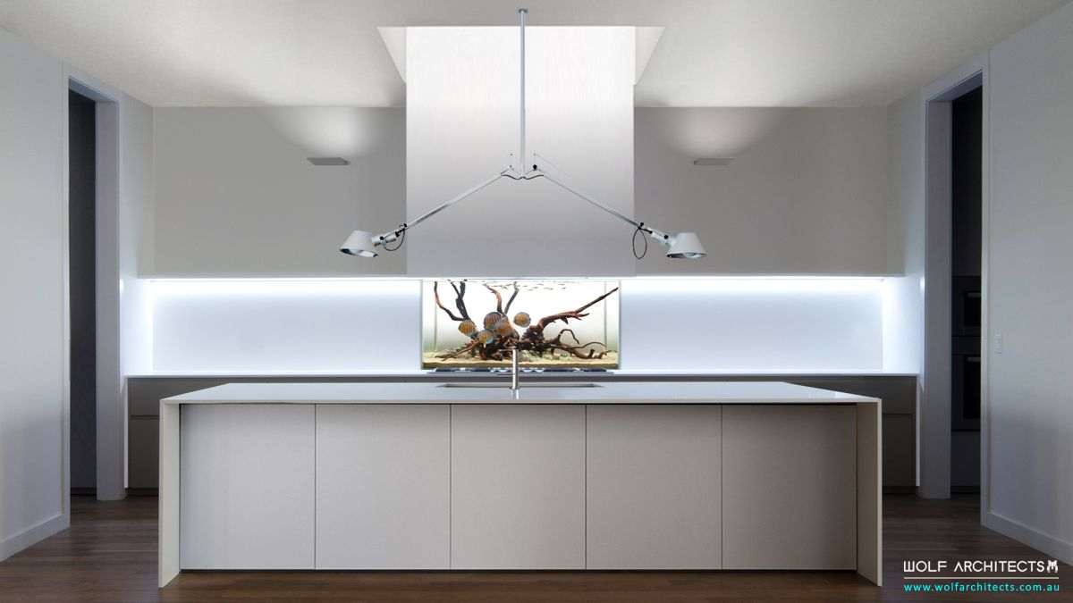 Frosted glass house minimalist kitchen with fish tank